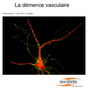 couverture-demence-vasculaire