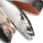 poissons gras